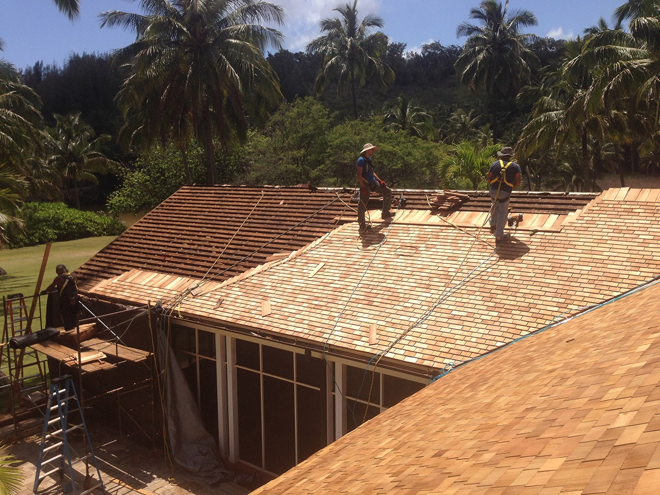 cedar roofing - Western Red Cedar Shingles Hawaii