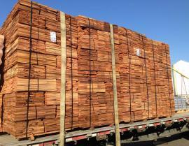 western red cedar - IMG 1693 270x209