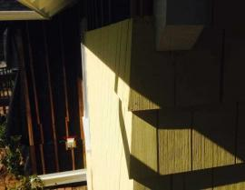yellow cedar shingle panel - IMG 7560 270x209