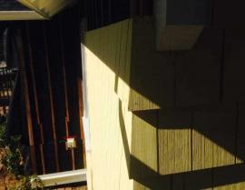 yellow cedar shingle panel - IMG 7560 270x209